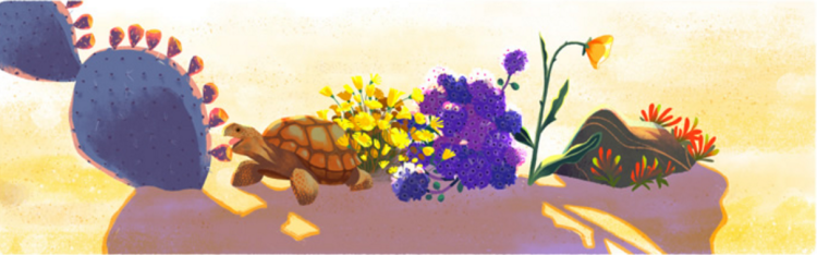 earth-day-google-fauna-flora-turtle